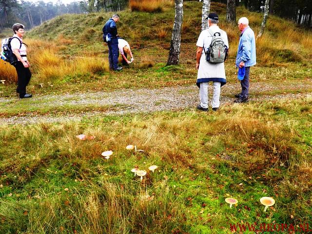 20-10-2012     Wedeblick-   Driebergen        25 Km (19)