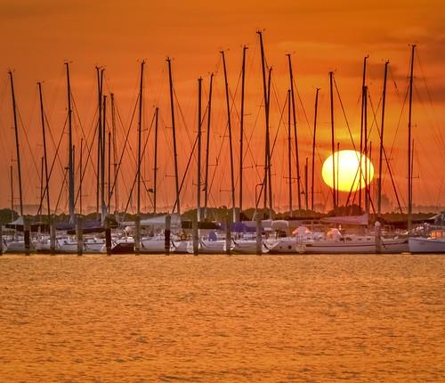 sunset sea sun beach marina boats coast boat nikon yacht shoreline australia melbourne victoria shore vic coastline yachts masts stkilda portphillipbay d5100 nikond5100 phunnyfotos