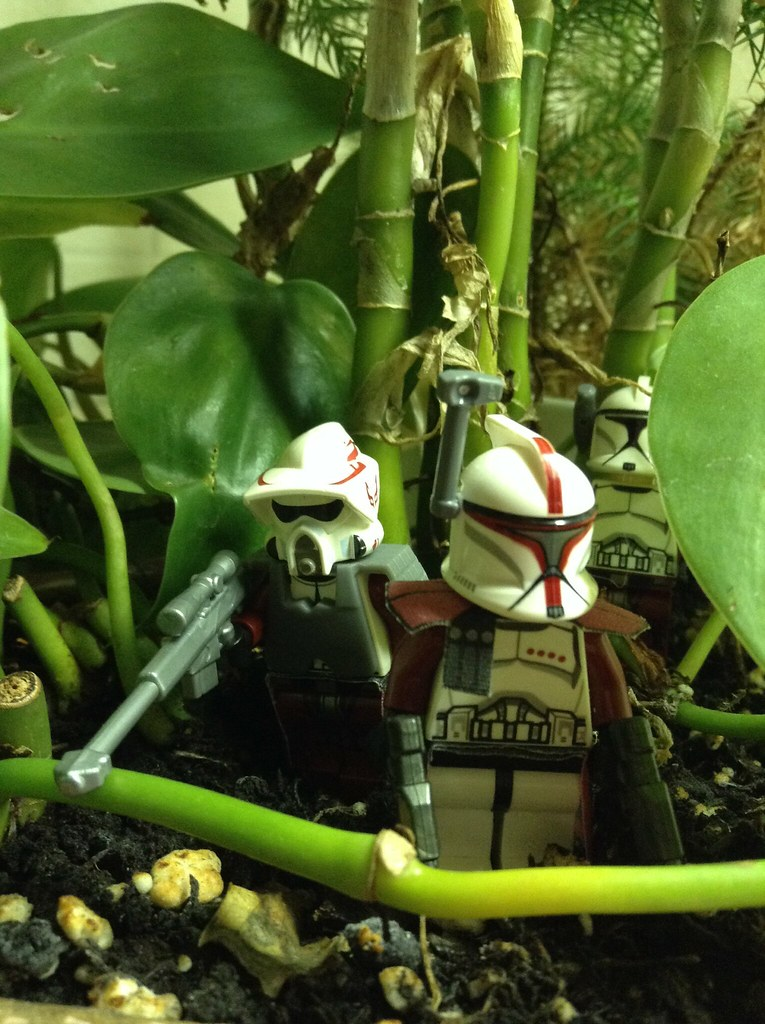 Able Planet: Deep In The Jungle Of An Outer Rim Planet, Able Squad Is O