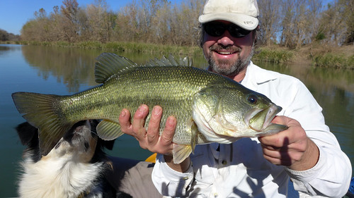 Huge bass on the Colorado river   by PaddyMurphy