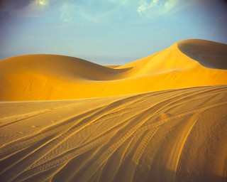 Tracked Golden Dunes | by Doha Sam