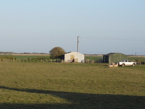 Lydd farm | by satguru