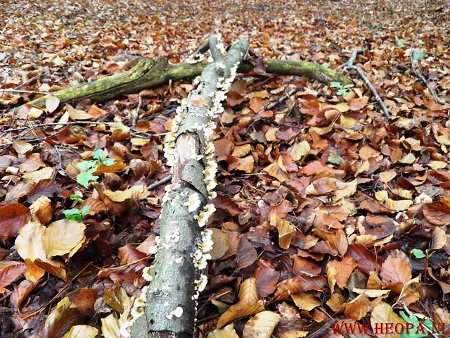 20-10-2012     Wedeblick-   Driebergen        25 Km (131)