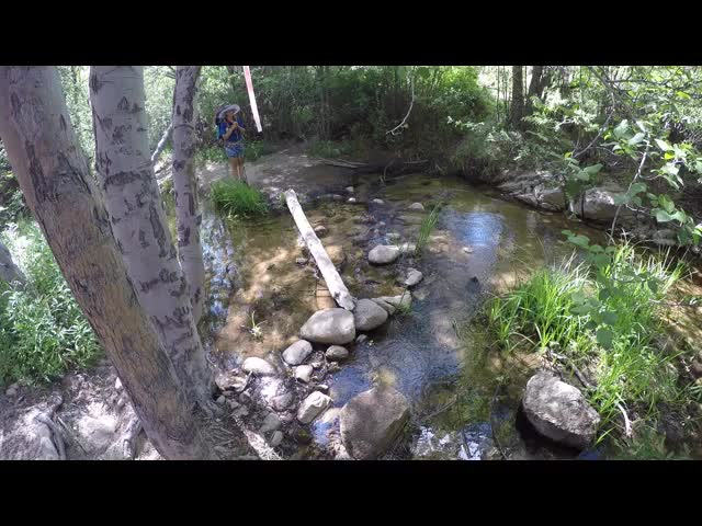 0614 GoPro video of me crossing Holcomb Creek at PCT mile 294