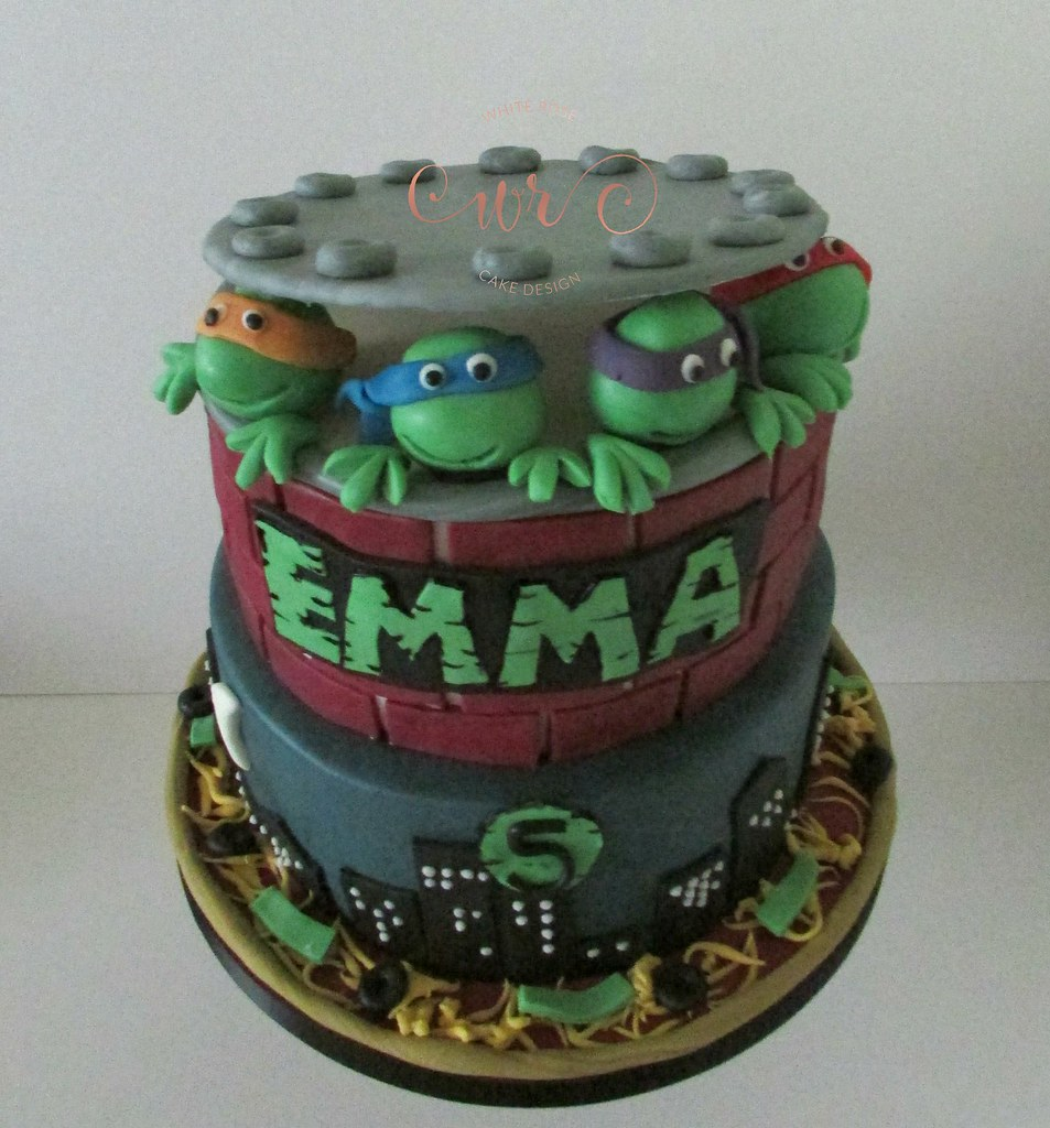 Astonishing Teenage Mutant Ninja Turtles 5Th Birthday Cake Whitero Flickr Funny Birthday Cards Online Benoljebrpdamsfinfo