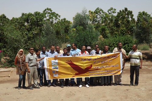 Egypt - Nature Conservation Sector - Passing through Aswan | by World Migratory Bird Day worldmigratorybirdday.org