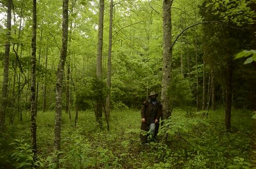 trees portrait green forest self persona virginia costume woods nikon cowboy path character hike trail disguise villain vr renegade outlaw selfie natureconservancy southwestvirginia 18200mm newrivervalley rustler renegado fallsridge d7000