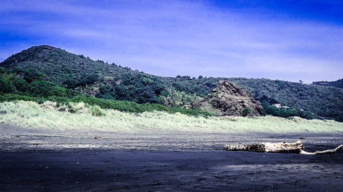 TrekLens   Piha beach Photo