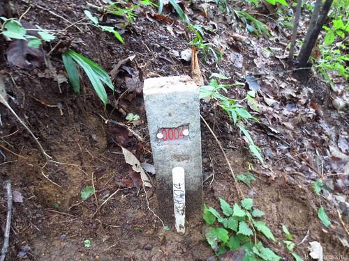 Thu, 08/02/2012 - 10:06 - BTMxjdufield12