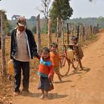 03 Viajefilos en Laos, Bolaven Plateau 43