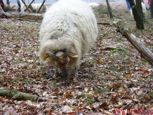 WSV Wandeltocht    Huizen NH.     23-02-2008   20km (21)