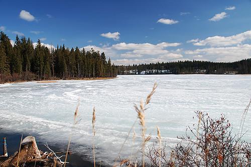 Stake Lake, Kamloops, Thompson Nicola, British Columbia, Canada