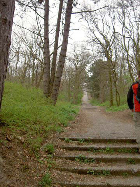 Scheveningen         22-04-2006       30 Km(23)