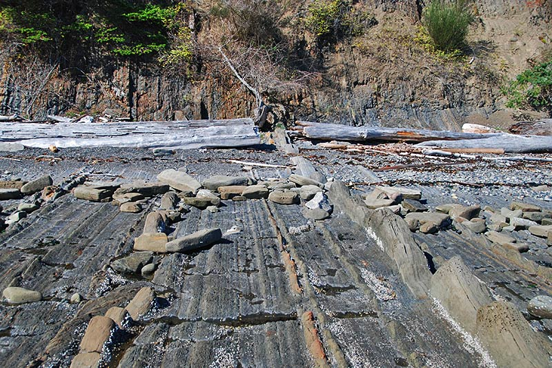 Sedimentary Rock Formations, Conery Crescent Beach, Pender Island, Gulf Islands, British Columbia