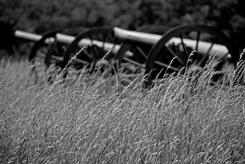bw grass virginia nps petersburg battle civilwar cannon battlefield nationalparkservice americancivilwar scfiasco petersburgnationalbattlefield siasoco edsiasoco