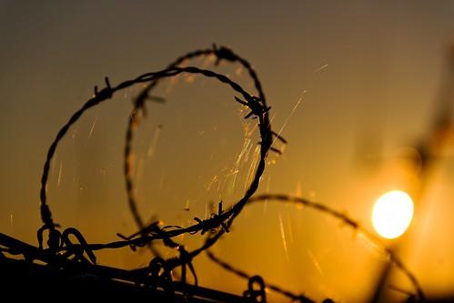 morning orange sun finland helsinki august barbwire 2013 canoneos7d adobelightroom4