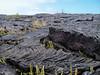 Láva z Kilauey, foto: Ondřej Krátoška