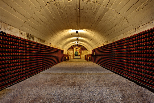 Cellar 20
