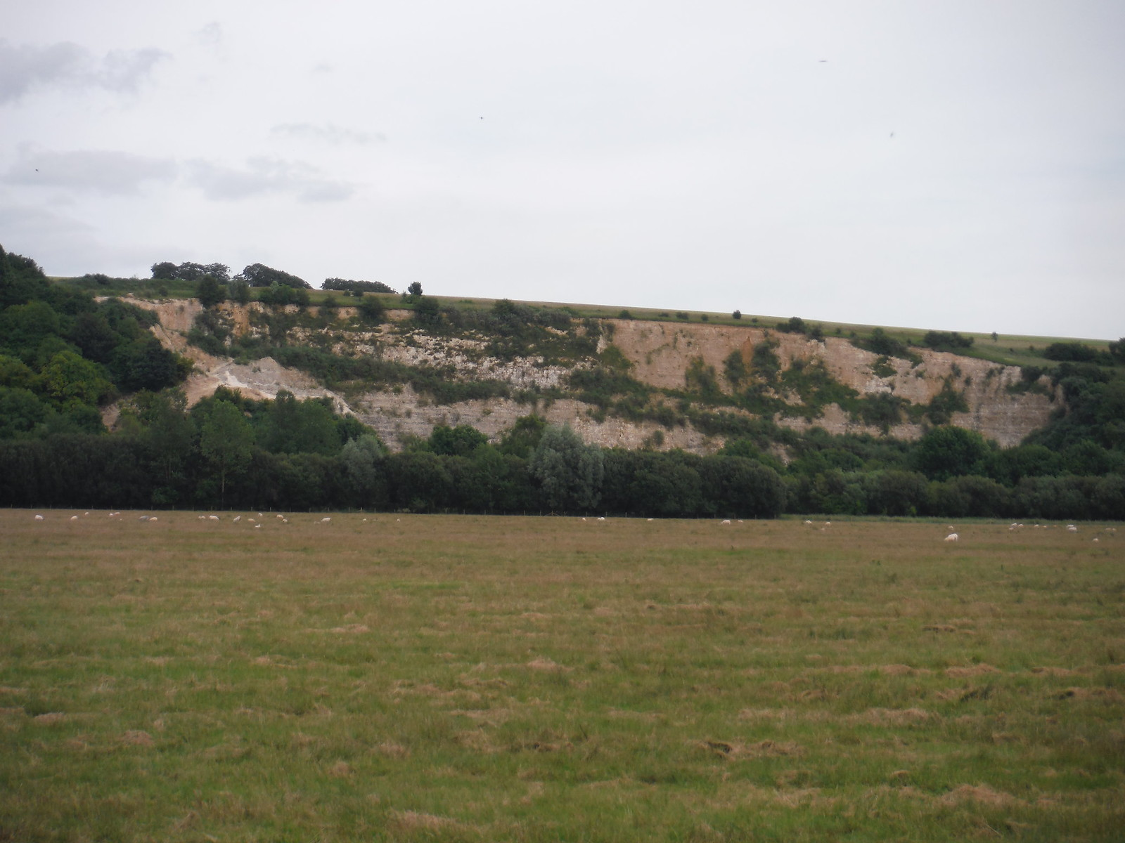 Quarry, from Test Meadows SWC Walk 265 - Dean to Mottisfont and Dunbridge