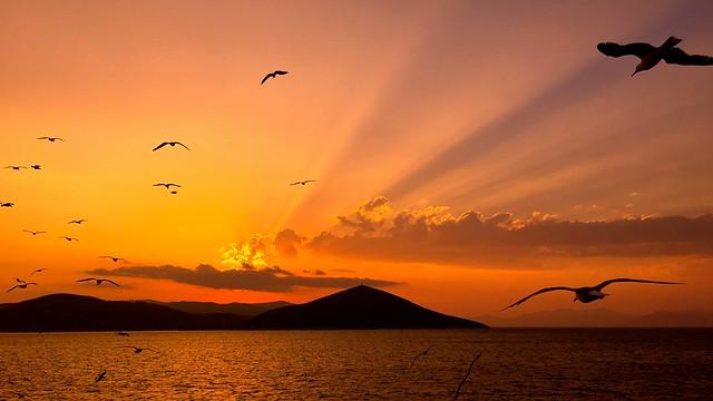 Sunset flight *ExpLorE*