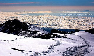 Fresh Tracks above the Clouds on a Fresh Morning - Be careful you don't walk off the cliff