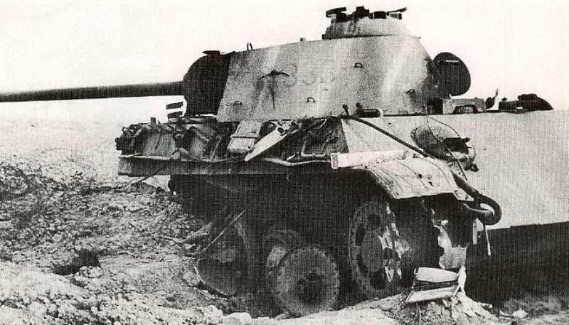 Panther (5)