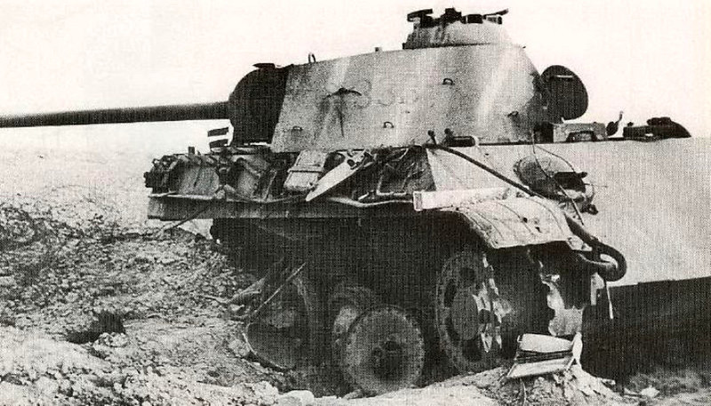 黑豹(5)