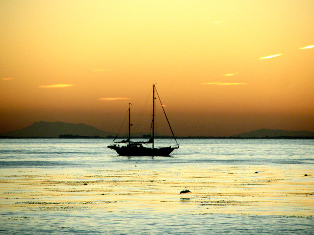 morning sailboat