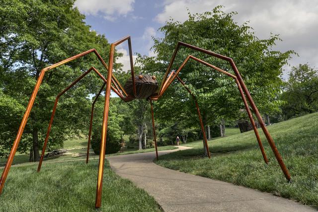 Daddy long-legs, David Rogers Big Bugs, Cheekwood Botanical Garden, Nashville, Tennessee