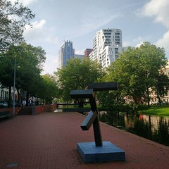 shapes of Rotterdam