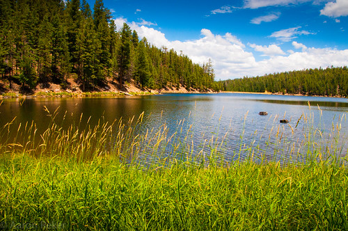 trees arizona lake mountains water clouds photoshop az bluesky payson mogollonrim lightroom bearcanyonlake d90 northernaz rimrd