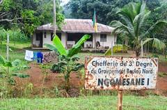 Chefferie au Cameroun