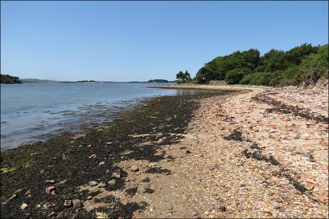 The coast of Brownsea Island