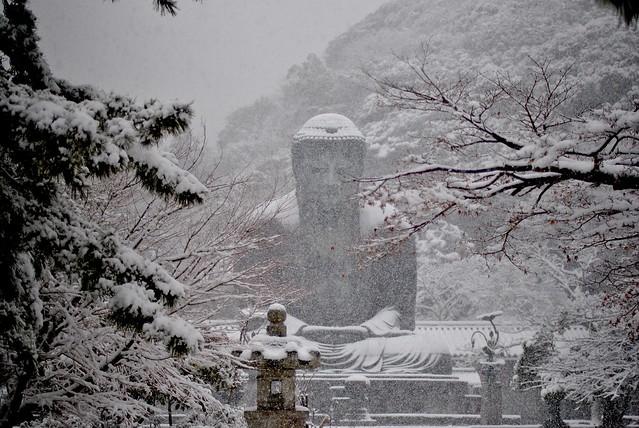 Japanese Daibutsu of Kamakura in a Rare Snowfall