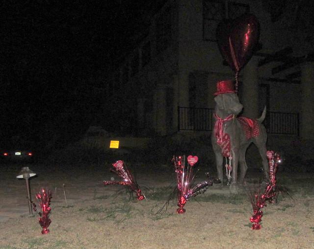 IMG_9519 Valentines Day dog statue Santa Barbara-001