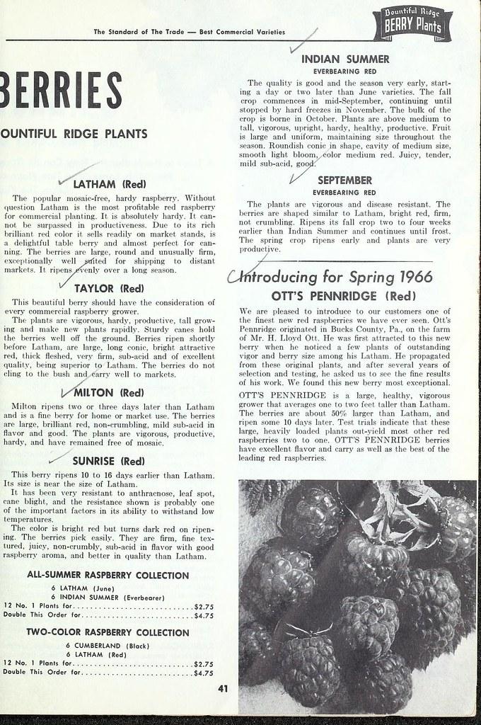 n46_w1150 | Planting guide :  Princess Anne, Md  :Bountiful