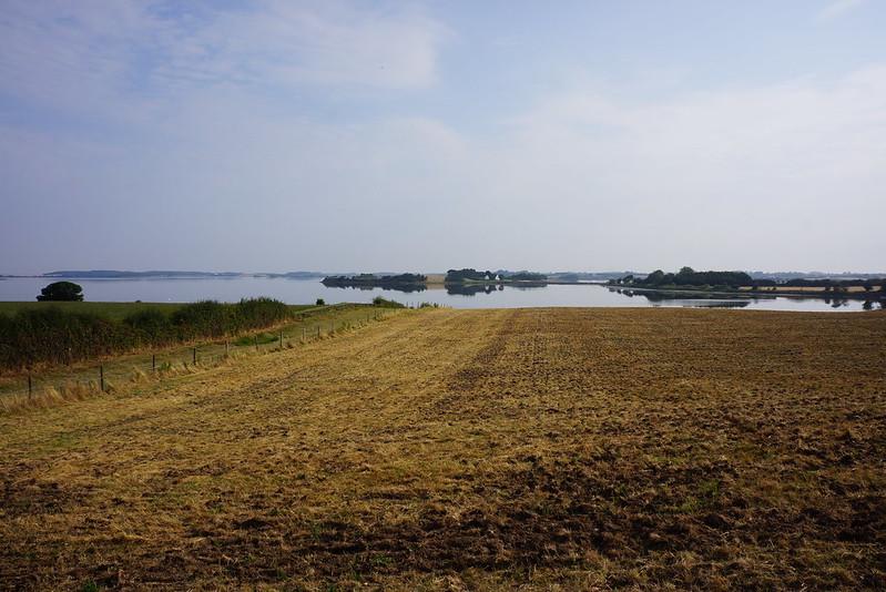 Kaedeby-Haver-2014-07-27 (8)