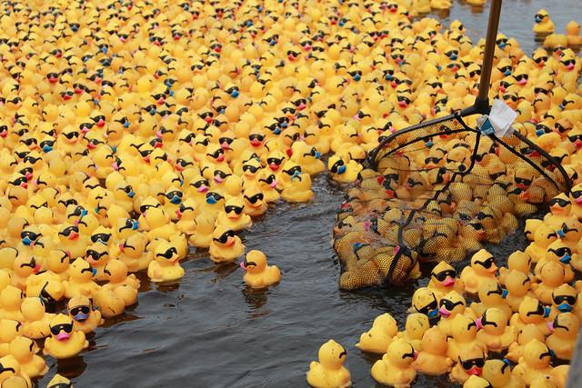 NOLA-DucklingRace_0038