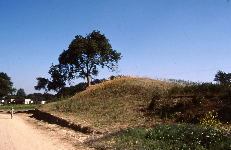 Kosambi India