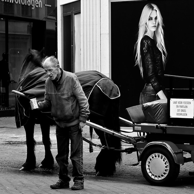 The Beauty and the Organ Grinder