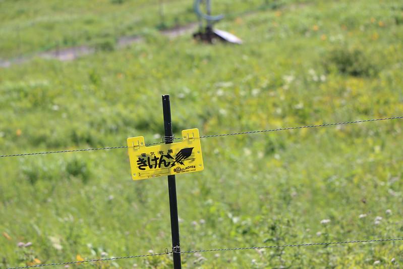 2014-07-26_00676_霧ヶ峰.jpg