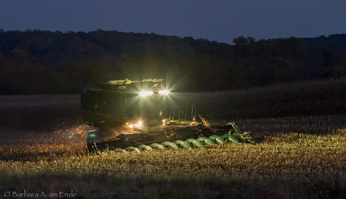 usa field night lights corn harvest maryland combine moment hardwork harvesting windowofopportunity