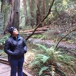 Image: Aditi and the trees