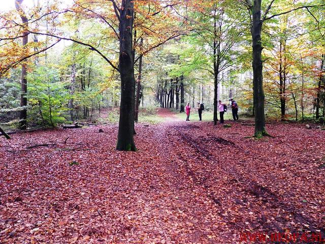 20-10-2012     Wedeblick-   Driebergen        25 Km (95)