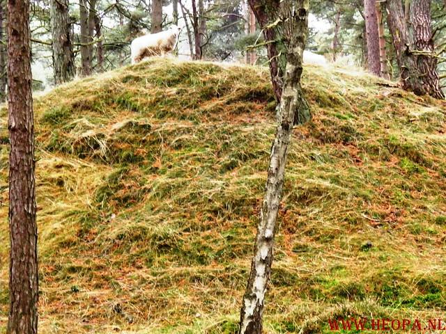 20-10-2012     Wedeblick-   Driebergen        25 Km (67)