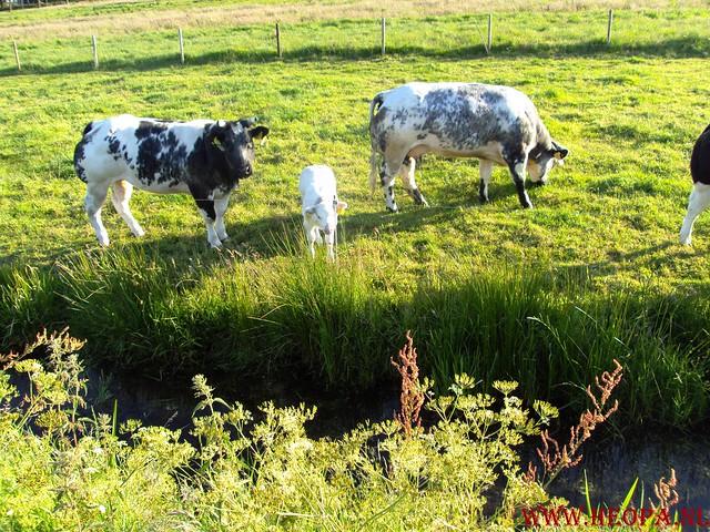 30-05-2009     Rondje Spakenburg 40 Km  (12)