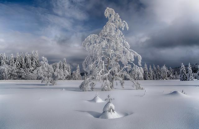Winter Magic - Explored -