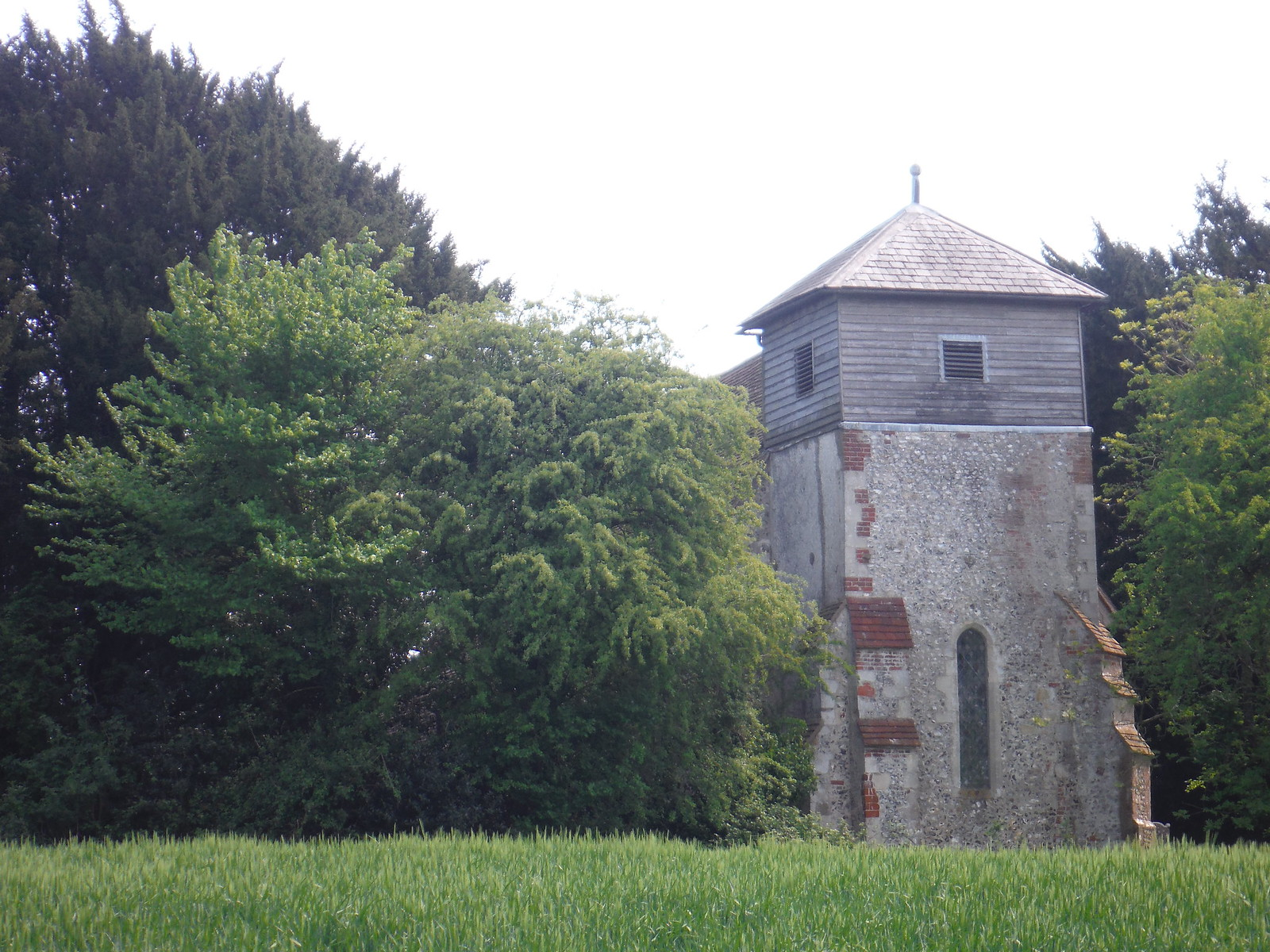 St. Michael and All Angels, Up Marden, across Field SWC Walk Rowlands Castle Circular