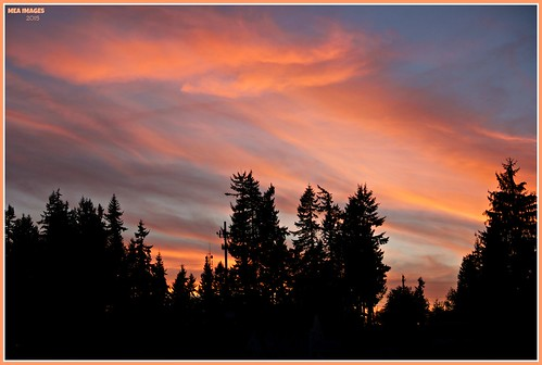 trees sunset color clouds canon washington twilight dusk silhouettes wa graham flaming picmonkey:app=editor