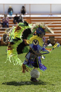 North American Indigenous Cultural Festival!   taherehbarati